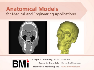 Slide-title_anatomical-models_2013OCT17